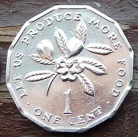 1 Цент, 1975 года, Ямайка, Монета, Монеты, 1 One Cent1975, Jamaica, FAO, ФАО,Флора, Гілка квітучого дерева,Flora, Branch of a flowering tree,Флора, Ветка цветущего деревана монете, Coat of arms ofJamaica, Герб Ямайкина монете.