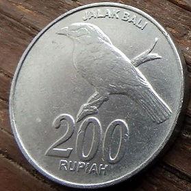 200 Рупий, 2003 года, Индонезия, Монета, Монеты, 200 Rupiah 2003, Republik Indonesia, Птах, Шпак балійський, Bird, Bali myna, Птица, Балийский скворец на монете, National emblem of Indonesia, Герб Индонезии на монете.