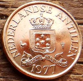 1Цент, 1977 года, Нидерландские Антильские острова, Монета, Монеты, 1Сent1977, Nederlandse Antillen,Зірки, Stars,Звездына монете,Корона, Crown, Coat of arms of the Netherlands Antilles,Герб Нидерландских Антильских острововна монете.