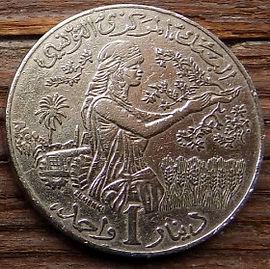 1 Динар, 1988 года, Тунис,Монета, Монеты, 1Dinar 1988, Tunisia, Дівчина,Трактор, Урожай,Girl, Tractor, Harvest,Девушка, Трактор, Урожайна монете,Tunisian territory outline,Контур территории Туниса на монете.