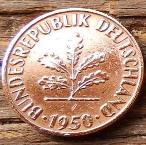 1 Пфенниг,1950 года, ФРГ, Германия, Німеччина,Монета, Монеты, 1 Pfennig 1950,BUNDESREPUBLIK DEUTSCHLAND,Spikelets, Колоскина монете,Дубовые листья на монете.
