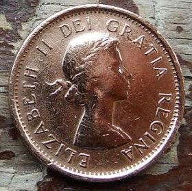 1 Цент, 1957 года,Канада, Монета, Монеты, 1 Cent 1957, Canada,Флора, Кленове листя,Flora, Maple leaves, Флора, Кленовые листьяна монете, Королева Elizabeth II, Елизавета IIна монете, Первый портрет королевы.