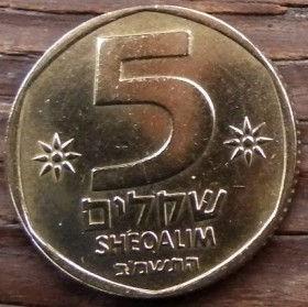 5 Шекелей, 1982 года, Израиль, Монета, Монеты, 5 Sheqalim 1982, Israel, Ріг достатку, Horn of plenty,Рог изобилия, Emblem of Israel, Герб Израиля на монете.