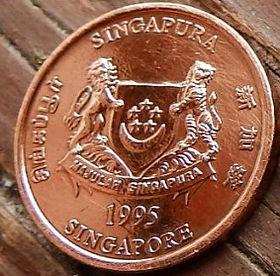 1 Цент, 1995 года, Сингапур, Монета, Монеты, 1 One Cent 1995, Singapore,Флора, Квітка орхідеї, Flora, Orchid flower, Флора, Цветок орхидеи на монете, Coat of arms of Singapore, Герб Сингапурана монете.