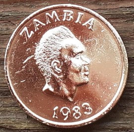 1 Нгве, 1983 года, Замбия,Монета, Монеты, 1 One Ngwee 1983, Zambia,Фауна, Трубкозуб, Fauna, Orycteropus afer,Фауна, Трубкозуб на монете, Kenneth David Kaunda,Кеннет Каундана монете.