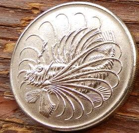 50 Центов, 1968 года, Сингапур, Монета, Монеты, 50 Cents 1968, Singapore, Flora, Spikelets, Флора, Колоски на монете, Риба-Лев, Lion fish, Рыба-лев на монете.