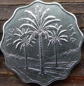 10 Филсов, 1975 года, Ирак, Монета, Монеты, 10 Fils1975, Irak,Spikelet, Leaf of a tree,Колосок, Листок деревана монете, Flora, Palm, Флора, Пальма на монете.