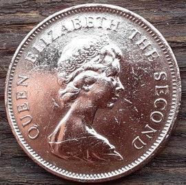 2 Пенса, 1981 года, Джерси, Монета, Монеты, 2 Two Pence 1981, Jersey,Coat of Arms,Герб,Fauna, Фауна,Lions, Львы на монете,Королева Elizabeth II, Елизавета IIна монете, Второй портрет королевы.