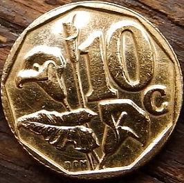 10 Центов, 1996 года, ЮАР,Монета, Монеты, 10 Cents1996,South Africa,Флора,Квітка, Flora, Flower, Флора, Цветок на монете, Coat of arms of South Africa, ГербЮАРна монете.
