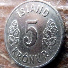 5 Крон, 1969 года, Исландия, Монета, Монеты, 5 Kronur 1969, Island,Iceland, Flora,Флора,Листя, Leaf, Листья на монете, Герб,Coat of arms, Bull, Бык,Vulture,Гриф,Dragon, Дракон,Giant, Великан на монете.