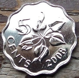 5 Центов, 2008 года,Свазиленд,Эсватини, Монета, Монеты, 5 Cents2008, Swaziland,Eswatini,Флора,Квітка, Flora, Flower, Флора, Цветок на монете, King Mswati III, Король Мсвати IIIна монете.