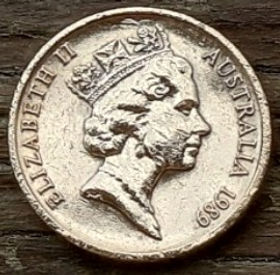 1 Цент, 1989 года,Австралия, Монета, Монеты, 1Cent 1989, Australia,Dwarf flying couscous,Карликовый летучий кускус на монете, Королева Elizabeth II, Елизавета IIна монете, Третий портрет королевы.