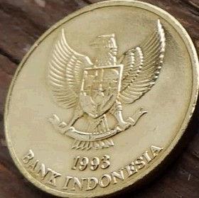 50 Рупий, 1993 года, Индонезия, Монета, Монеты, 50 Rupiah 1993, Republik Indonesia, Ящірка, Варан Комодський,Lizard, Komodo dragon, Ящерица, Комодский варан на монете, National emblem of Indonesia, Герб Индонезии на монете.