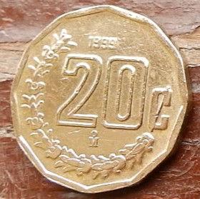 20 Сентаво, 1999 года,Мексика, Монета, Монеты, 20 Centavos 1999,Estados Unidos Mexicanos, Рослинний орнамент,Floral ornament,растительный орнамент на монете,Coat of arms of Mexico, Герб Мексикина монете.