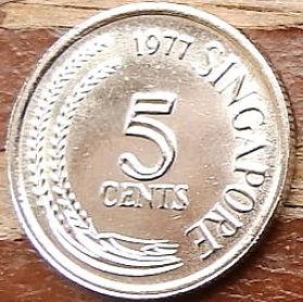 5 Центов, 1977 года, Сингапур, Монета, Монеты, 5 Cents 1977, Singapore, Flora, Spikelets, Флора, Колоски на монете,Птах, Змієшийка, Bird, Anhinga, Птица, Змеешейкана монете.