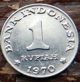 1 Рупия, 1970 года, Индонезия, Монета, Монеты, 1 Rupiah 1970, Republik Indonesia, Пташка, Віялохвістка, Bird, Fantails, Птичка, Веерохвостка на монете.