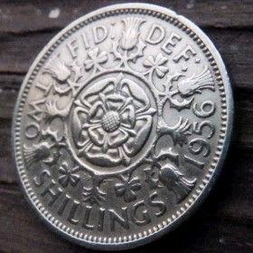 2 Шиллинга, 1956 года,Великобритания, Монета, Монеты, 2 Two Shillings 1956, Flora, Флора, Квіти, Flowers,Цветы на монете, КоролеваElizabeth II, ЕлизаветаII на монете, Первый портрет королевы.