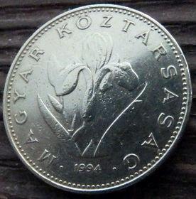 20 Форинтов, 1994 года,Венгрия, Монета, Монеты,20 Forint 1994,Hungary, Угорщина, Magyar, Квітка, Flower, Цветок,Iris aphylla hungarica,Венгерский ирис на монете.