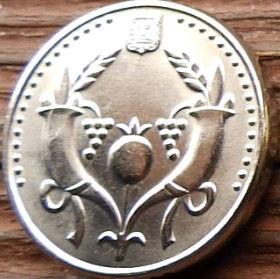 2 Новых Шекеля, 2008 года, Израиль, Монета, Монеты, 2 New Sheqalim 2008, Israel,Ріг достатку, Плід гранату, Horn of plenty, Pomegranate fruit, Рог изобилия, Плод граната на монете.