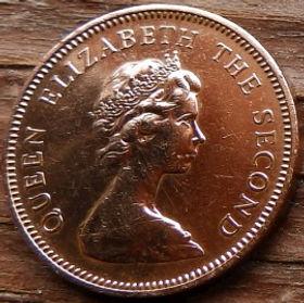 1 Пенни, 1971 года, Джерси, Монета, Монеты, 1 One New Penny 1971, Jersey,Coat of Arms,Герб,Fauna, Фауна,Lions, Львы на монете,Королева Elizabeth II, Елизавета IIна монете, Второй портрет королевы.