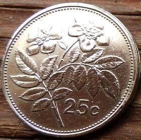 25 Центов, 1995 года, Мальта, Монета, Монеты, 25 Cents 1995, Malta, Flora,Флора,Шипшина,Dog-rose,Шиповникна монете,Coat of arms,Гербна монете.