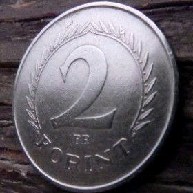 2 Форинта, 1950 года,Венгрия, Монета, Монеты,2Forint 1950,Hungary, Угорщина, Magyar, Рослинний орнамент,растительный орнамент,floral ornamentна монете, Coat of arms,Герб на монете.