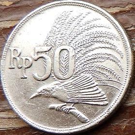 50 Рупий, 1971 года, Индонезия, Монета, Монеты, 50 Rupiah 1971, Republik Indonesia, Райський птах, Bird of paradise, Райская птицана монете.
