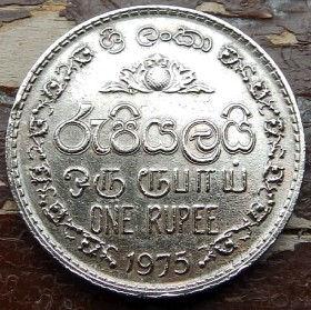 1 Рупия, 1975 года,Шри-Ланка, Монета, Монеты, 1One Rupee1975, Sri Lanka,Ornament,Орнамент на монете,Emblem of Sri Lanka,Герб Шри-Ланки на монете.