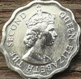 1 Цент, 2005 года, Белиз, Монета, Монеты, 1 One Cent 2005, Belize, Рослинний орнамент, Floral ornament, Растительный орнамент на монете, Королева Elizabeth II, Елизавета II на монете, Второй портрет королевы.