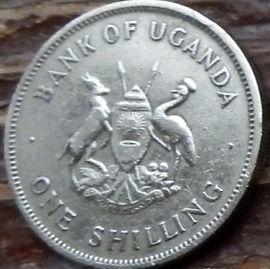 1 Шиллинг, 1975 года, Уганда,Монета, Монеты, 1 One Shilling 1975, Uganda,Eastern crowned crane, Восточный венценосный журавль на монете, Coat of arms of Uganda,Герб Угандына монете.