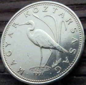 5 Форинтов, 1997 года,Венгрия, Монета, Монеты,5Forint 1997,Hungary, Угорщина, Magyar,Fauna, Фауна, Пташка, Bird,Птица, Біла чапля,Egret, Белая цапля на монете.