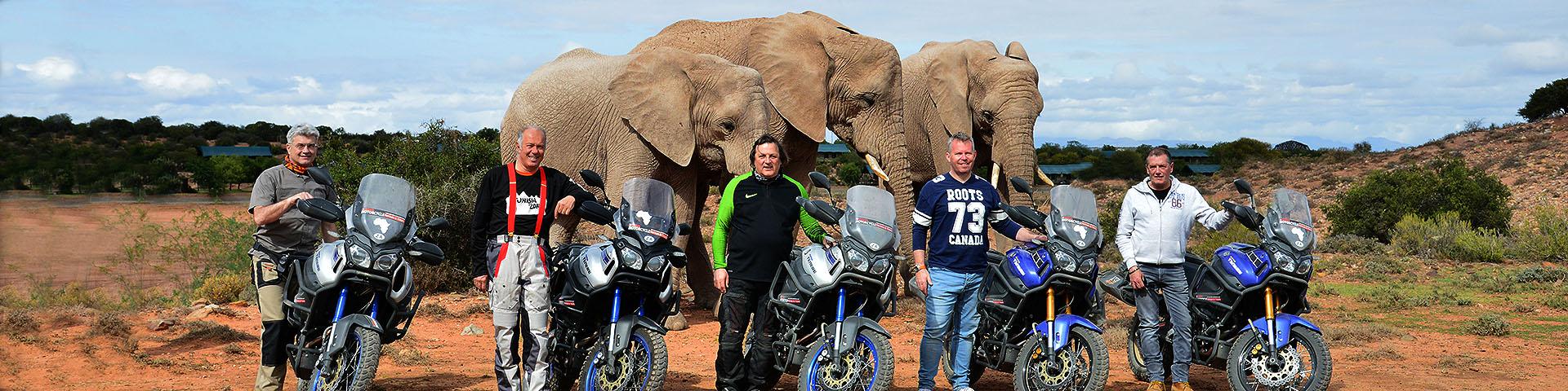 Experience Wild Africa