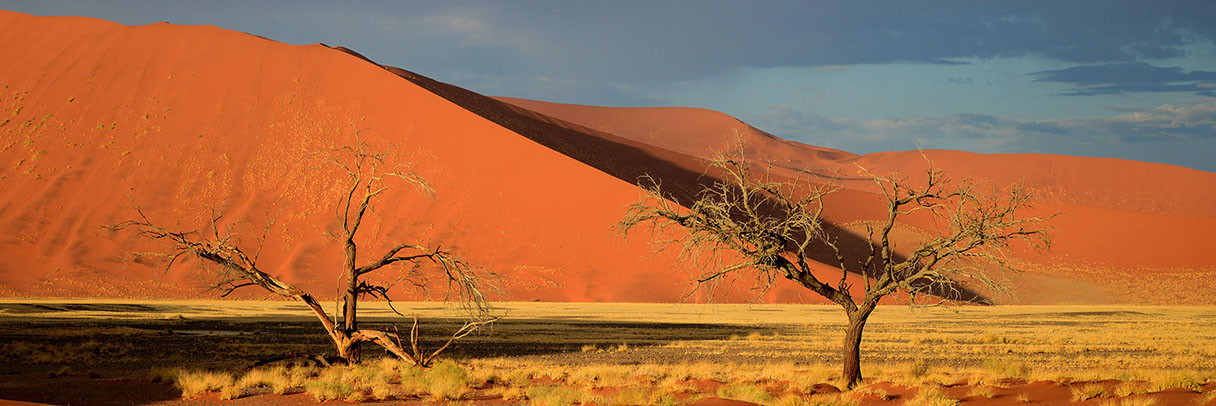 Sossusvlei Sand Dunes, Namibia