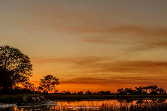 Chobe Sunset, Okavango Delta.jpg