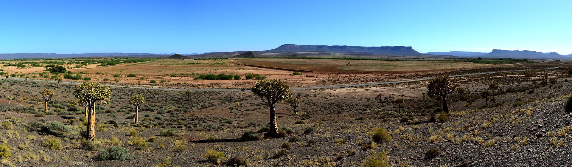 Gannabos Flower Region