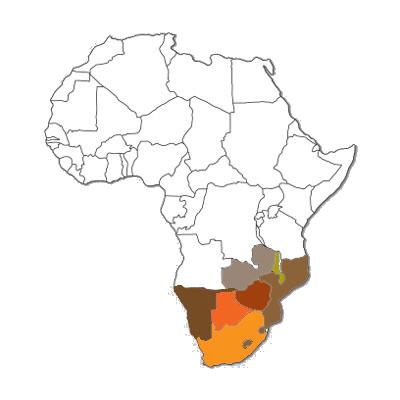 MSA MAP.png
