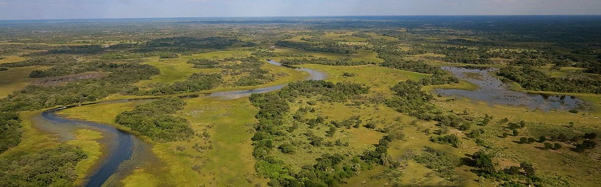 Flying Over Okavango Delta