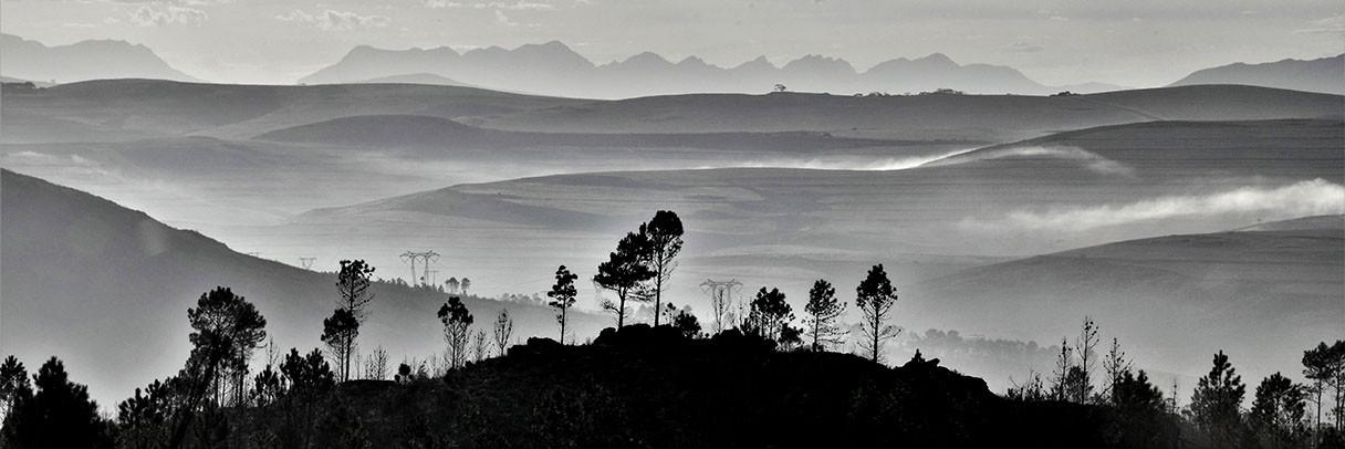 Overberg Landscapes, Western Cape