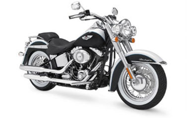 Harley Davidson Softail 103/107 hire in Cape Town