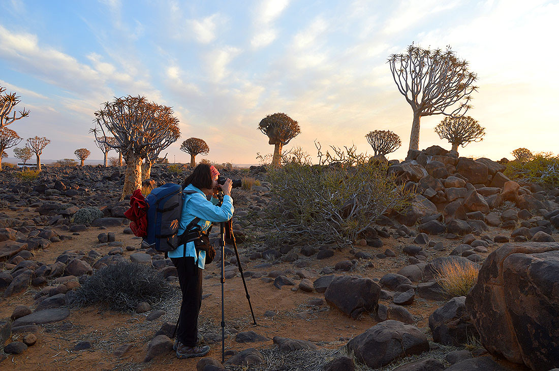 Sunset in Quivertree Forest, Namibia