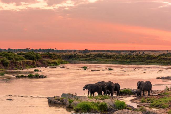 Chobe River, Botswana .jpg