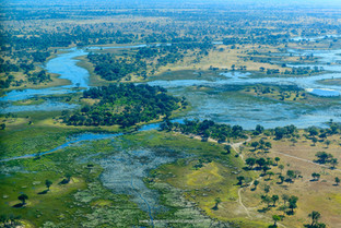 Okavango Delta.jpg
