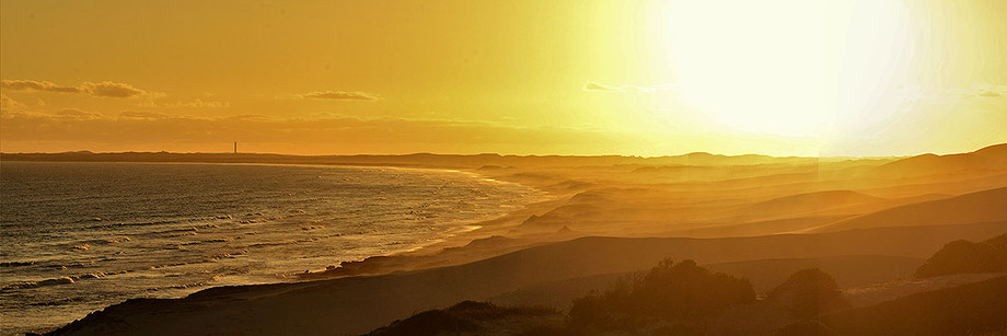 Sand Dunes, De Hoop Nature Reseve