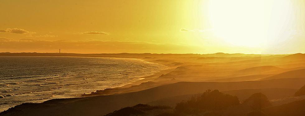 Coastal Sand Dunes, De Hoop Nature Reserve