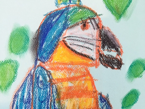Parrot Pastel drawing - 5-7 year olds