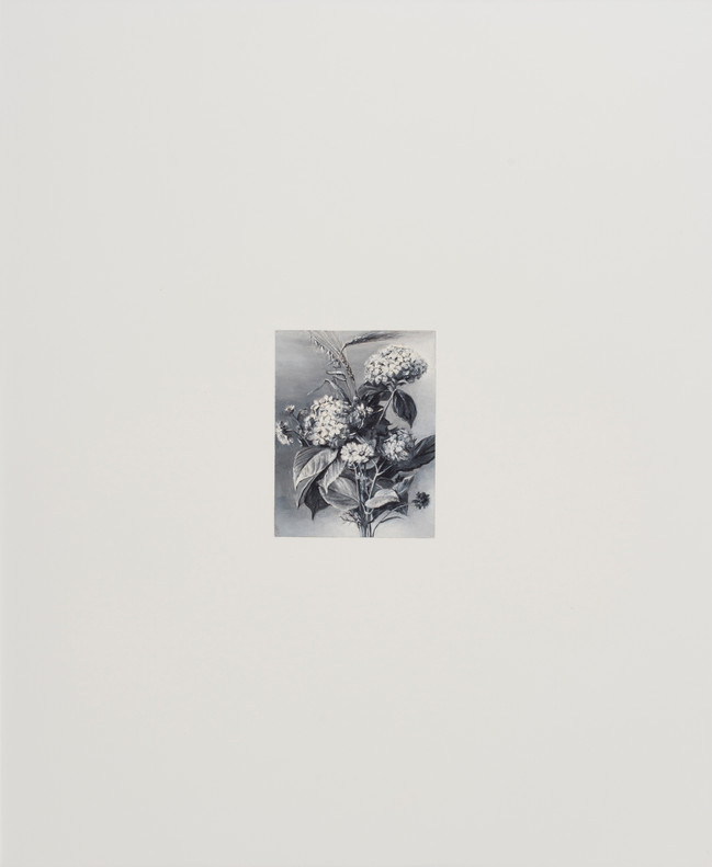 Reclaimed reproduction 8,2011