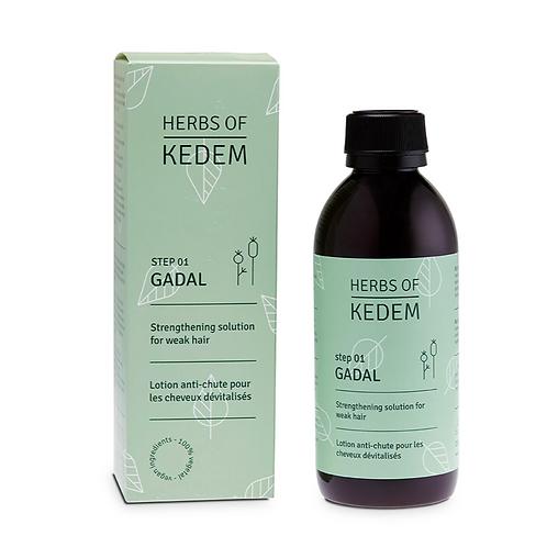 Step 1 in hair regrowth treatment - GADAL Solution 250ml