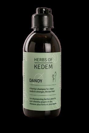 Hair regrowth+anti-dandruff shampoo - Dandy 250ml