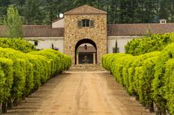 Stellenbosch wine region close to Cape T