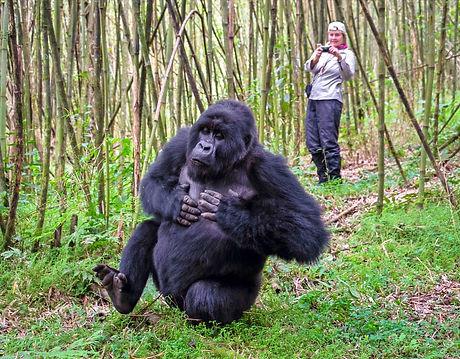 Rwanda-308e_edited_edited.jpg
